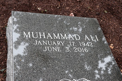 MUHAMMAD ALI (Fat Bastard_) Tags: goat muhammadali