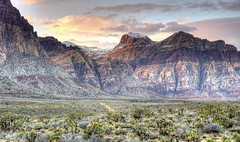 Winter Storm (magnetic_red) Tags: storm stormy clouds snow mountains desert colorful plants green sunset landscape redrockcanyon nevada