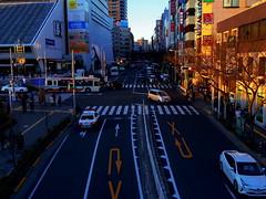 IMGP5339 (digitalbear) Tags: pentax q7 01 standard prime 85mm f19 nakano tokyo japan fujiya camera