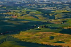 Palouse Hills from Steptoe Butte – #nXnw2015 (mgarbowski) Tags: landscape photo washington fujinon palouse nxnw 55200mm xt1 nxnw2015
