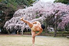 回程時,看到相撲力士在練習 (ilin Huang) Tags: 日本 2014 京都御苑 京都市 京都府 京阪神親子七日遊