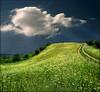 Lunar world (Katarina 2353) Tags: sky cloud flower nature field grass landscape photo outdoor hill grassland pathway katarina2353 serbiainspired