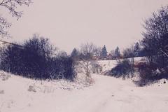 Šatrinci 2017 (aria.) Tags: serbia vojvodina srem šatrinci winter