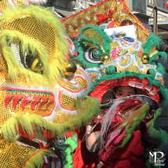 Inside the Dragon (PitAdVitam) Tags: lisbon lisboa baixa chinesenewyear cockyear china chinese parade kungfu multicutural