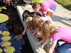 Curiosity (Colorado Sands) Tags: curious inquisitive girls denver colorado denverbotanicgardens usa denverbotanicalgardens sandraleidholdt female youngladies