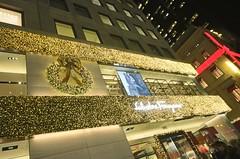 . (SA_Steve) Tags: christmas nyc christmasinnyc christmasinnewyorkcity xmas newyorkcity ny manhattan usa america unitedstatesofamerica unitedstates
