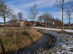 Nooderhogebrug (Jeroen Hillenga) Tags: noorderhogebrug groningen winter village dorp netherlands nederland sneeuw snow sloot ditch