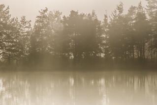 Moat mist