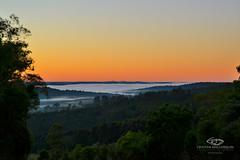 MISIONES AL DESNUDO (Cristian Mallorquin) Tags: amanecer selva monte reserva naranja moconá niebla mesopotamia biosfera yaboty arboles flora