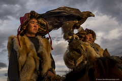Eagle Hunters (www.davidbaxendale.com) Tags: mongolia lonely planet bbc human golden eagle hunters altai mountains remote nomads