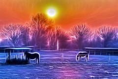 Fractalius (◄Laurent Moulin photographie►) Tags: image photo pic fractalius fractale redfield paysage landscape cheval chevaux hourse hourses colombier saugnieu