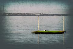 Floating gently (Paweł Szczepański) Tags: portorož piran slovenia si sal70200g sonyflickraward shockofthenew