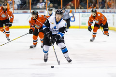 "Missouri Mavericks vs. Wichita Thunder, February 3, 2017, Silverstein Eye Centers Arena, Independence, Missouri.  Photo: John Howe / Howe Creative Photography • <a style=""font-size:0.8em;"" href=""http://www.flickr.com/photos/134016632@N02/32561327192/"" target=""_blank"">View on Flickr</a>"