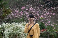 DSC_1191 (chenjn) Tags: d600 nikon 2470mm 妖怪村 柳家梅園 taiwan 信義鄉 梅花