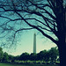 Washington Monument - Washington, DC. (Explored!)