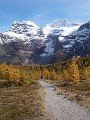 Larch Valley (fall) (altamons) Tags: autumn trees mountain canada mountains green nature forest landscape rockies interestingness interesting hiking rocky scout explore alberta banff rockymountains mountainview larch larches banffnationalpark larchvalley canadianrockies scouted explored altamons
