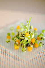 kiwi datagram (Splat Worldwide) Tags: food orange green topf25 topv111 fruit canon wow studio square eos still topv333 stripe plate 100v10f explore mandarin 5d dots kiwi 50mmf14 davele frissee