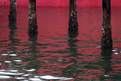 Red hull, pilings, water (Belltown) Tags: seattle red reflection grain pilings miksang freighter interestingness247 i500 terminal86 explore21feb06 photodomino390