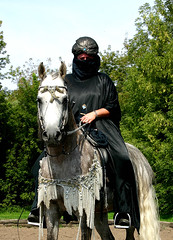 Rider in arabic costume (bea2108) Tags: horses horse animal animals cool arab arabian arabianhorse arabianhorses arabiannativecostume