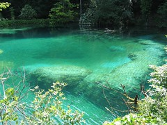 Ripples (OaklandNative) Tags: lake nature water beautiful nationalpark amazing croatia plitvice plitvicka jezera