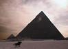Rider at the Pyramids (.brian) Tags: horse sand desert egypt pyramids rider giza