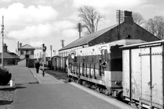 Ireland Athenry station 7th April 1977 (loose_grip_99) Tags: railroad ireland station train blackwhite gm diesel noiretblanc railway pickup trains goods 1977 railways freight irishrail 177 athenry class141