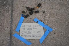 love this (Superchou) Tags: dog sign save3 save7 save8 save save2 baltimore save9 save4 poop shit save5 save10 save6 hampden unanisave