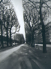paris (mumpasak) Tags: park trees shadow paris strange lane prospect linear top20fav