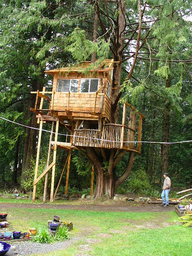 This unique tree house design