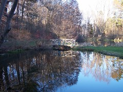 Bridge and Reflections (~flutterby~) Tags: bridge trees water reflections specnature