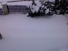 Last Shovel of January? - 3