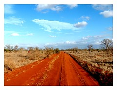 T_rex Road (Christine Lebrasseur) Tags: africa road travel blue sky orange france tree art clouds canon landscape hp kenya tsavo r707 interestingness27 allrightsreservedchristinelebrasseur landscapeseascapeskyscapeorcityscape