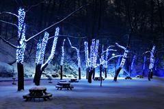 Foto de hodge a Flickr