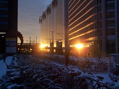 Golden lights (Photocapy) Tags: cs train station reflection gold bicycles snow parking wintermorning denhaag thehague nederland thenetherlands
