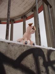 Men jeg står iallfall ikke og hyler (mrjorgen) Tags: winter oslo norway gris graffiti pig vinter birkelunden underskogno underskogsafari2005 paviljong underskogsafari2005konkurransen underskogsafari2005konkurranse oddnordstoga nordstoga grisenståroghyler
