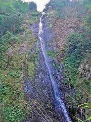 Main Fall, Tai Mo Shan Country Park, New Territories, Hong Kong 梧桐寨瀑布群-主瀑 (Snuffy) Tags: hongkong taimoshan countrypark newterritories heartawards