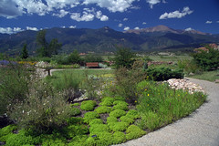 Xeriscape Garden (Joe_B) Tags: geotagged colorado peak xeriscape pikespeak geo:country=unitedstatesofamerica image:Shot=22 camera:make=canon geo:state=co camera:model=eoselan geo:city=coloradosprings event:Type=xeriscape image:rating=2 event:Group=joes roll:type=gold2006 address:Tag=xeriscapegarden address:Tag=xeriscape image:CD=63067 image:CD=6367 image:CDID=819332723442 cd:id=819332723442 cd:num=63 image:NegPage=0271 image:Roll=948 roll:num=948 roll:envelope=219577 neg:page=0271 event:Code=199809x