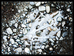 Ice Art III (Iguana Jo) Tags: ghiaccio ice ground terra sassi stones marzaglia italy earth
