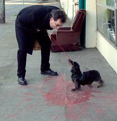 barfy (sillydog) Tags: 2005 red people dog animal oregon matt portland topv333 funny paint dachshund barf zelda sick laddsaddition orrcavictor