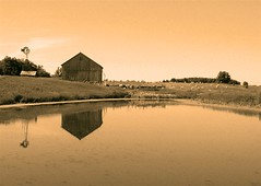 New Summer Farm (Mark Veitch) Tags: summer farm revised ontario barn field bales hay cows windmill water reflection sephia tag1 tag2 tag3 taggedout