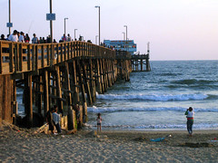 staring at the sea (Oliver Lavery) Tags: california newport beach ocean pier palm tree