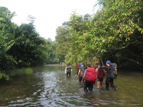 Eco aventura en Borneo