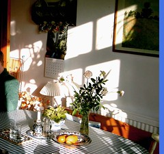 London is not always gloomy! (cure di marmo) Tags: kitchen sunshine table shadows caustics ilse flowervase gloomyheart cuoredimarmo