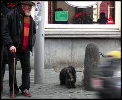 Listen, my friend: be careful! (malidinapoli) Tags: street brussels dog chien dogs topv111 cane bravo belgium belgique belgie bruxelles streetlife hideandseek loveit listening hund centurian brssel brussel hunde chiens listen cani belgien belgio gassi herrchen verstecken puschel cowboyhut stgilles dogowner brav stgillis zuhrend puschelhund