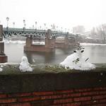 Neige sur la ville thumbnail