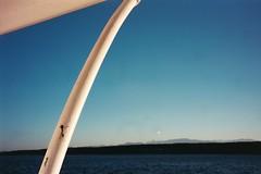Boat parts (Mamluke) Tags: blue sky sun sunlight canada azul ferry boot boat blauw blu horizon himmel victoria bleu ciel cielo blau tageslicht sunlit bateau hemel zonlicht lumiredusoleil luzdelsol mamluke lucesolare