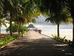 Maldives-tcr-deck-wallpaper