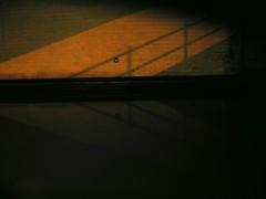 Kromme Rijn (Utrecht) (Harry Mijland) Tags: shadow holland netherlands dutch night utrecht nederland thenetherlands schaduw krommerijn dearharry waterlinieweg harrymijland