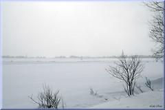 Beautiful silver world (Lida Rose) Tags: winter snow landscape village farm farmland lewiscounty lidarose croghanny interestingness412 explore09feb06