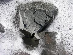 lakebonney-ice__32.jpg (miss_distance) Tags: lake ice stone antarctica ephemera textures ephemeral dryvalleys dryvalley icecracks candleice lakebonney icebubbles detailedviews mcmurdodryvalleys lter longtermenvironmentalresearch dryvalleyslter httporebodycom
